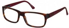 eye:max Modell 5795-4024
