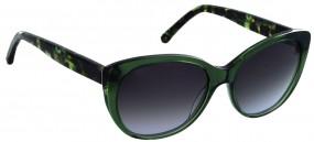 trend RO BM830-1335-55 Komplett-Angebot